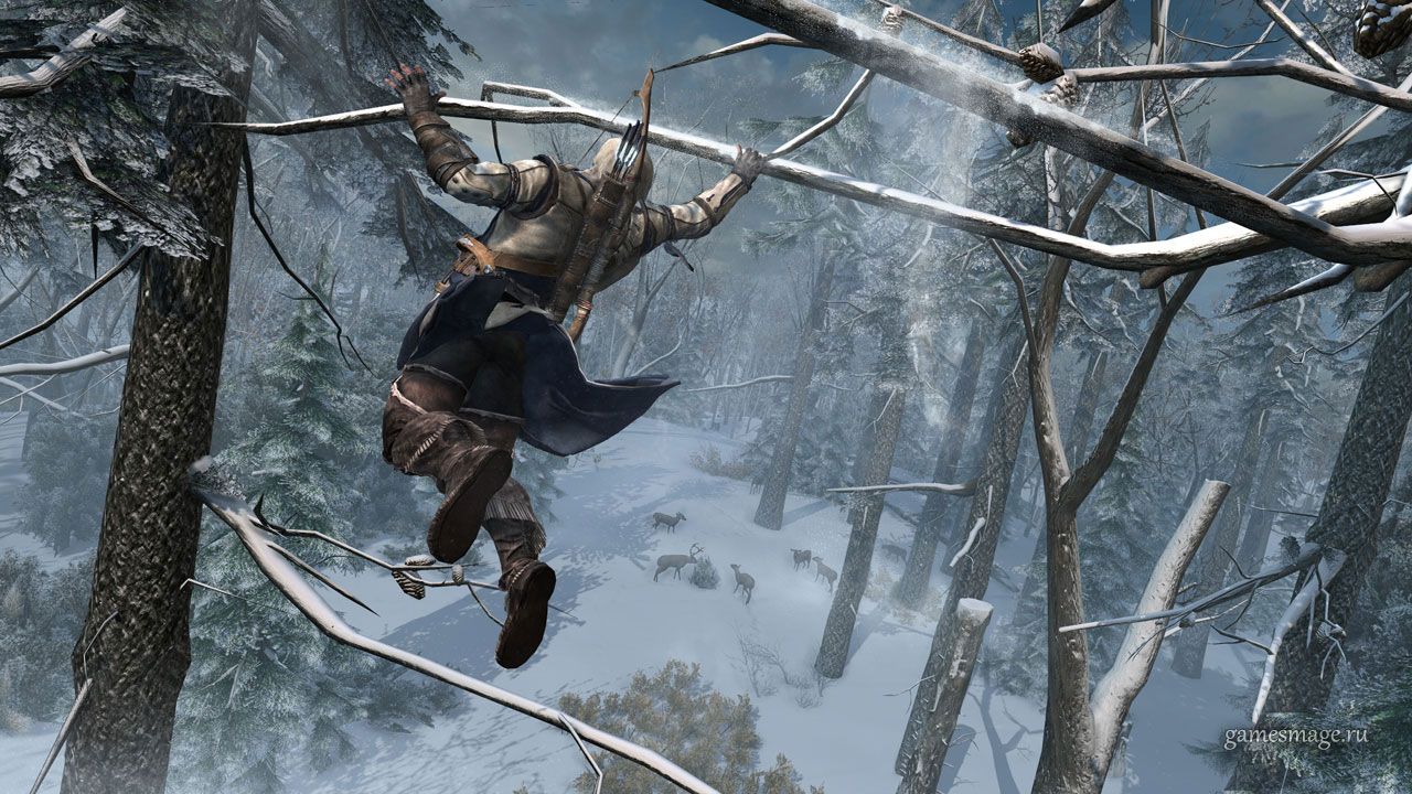 Assassin's Creed III - Screenshot 11/15
